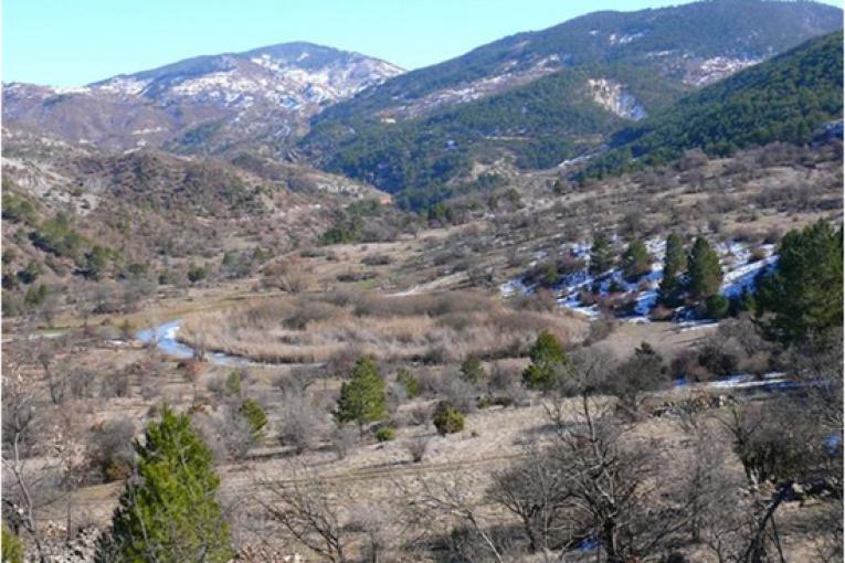 Orman Köylüsü Bahane -Ahmet Demirtaş