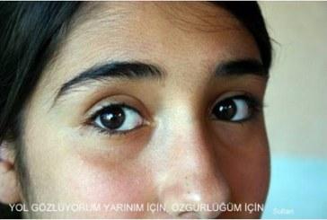 Yüzsüz Elmut III (Ek): Yol-Hakkı Zabcı