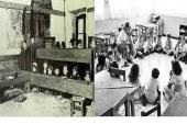 Demokratik Laik Bilimsel Eğitim