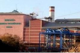 TMMOB Kimya Mühendisleri Odası: Şeker Fabrikaları Neden Satılıyor? Nereye?