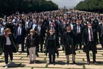 Alternati̇f Baro Kurma Hevesi̇ – Av. Mehdi Bektaş