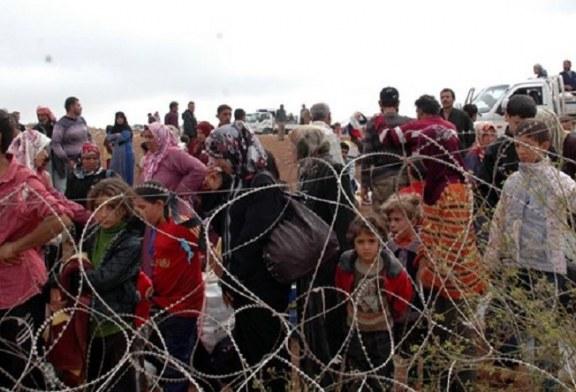 Kürtler ve Komşuları- Mehmet Tanju Akad